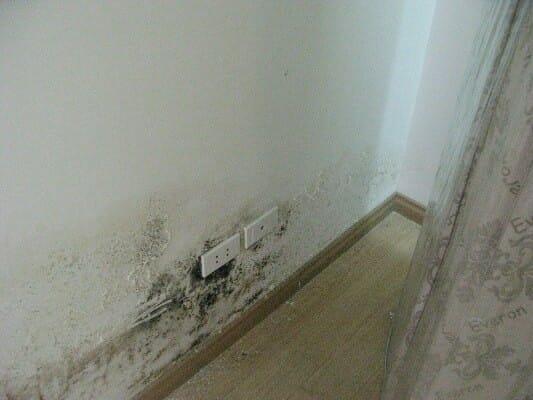Hiện tượng thấm nước tường nhà
